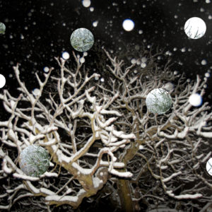 collage of a tree at night with snowflakes